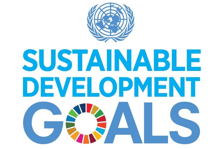 The 17 global goals - logo